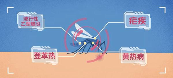 路人频遭毒虫攻击 虫豸孳生活跃季外出应做好防护