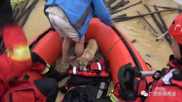 桂林一水坝决堤致村庄被淹 13人被困呼叫等待救援