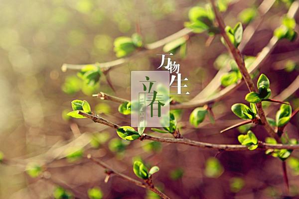 立春推开春大门 天气多变种类繁