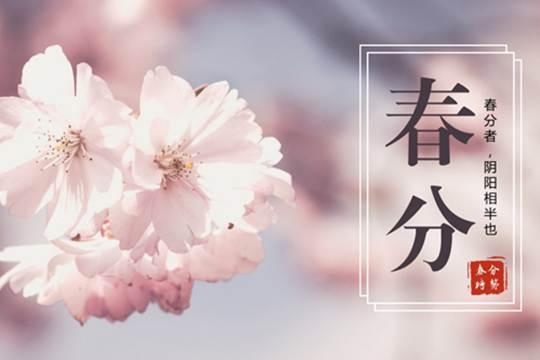 """春分时节至 广西天气很""""任性"""""""