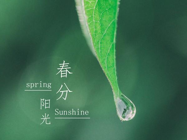 """春分时节 广西天气很""""任性"""""""