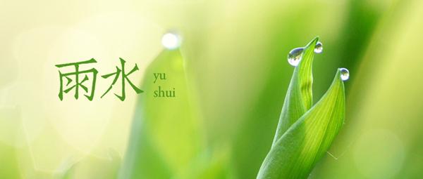 雨水 | 天将化雨舒清景,萌动生机待绿田