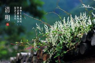 """广西清明不只雨纷纷 西南暖低压或制""""高温"""""""