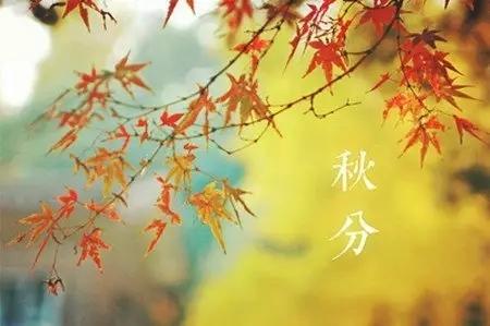 秋分遇上冷空气 较强降雨降温赠秋凉
