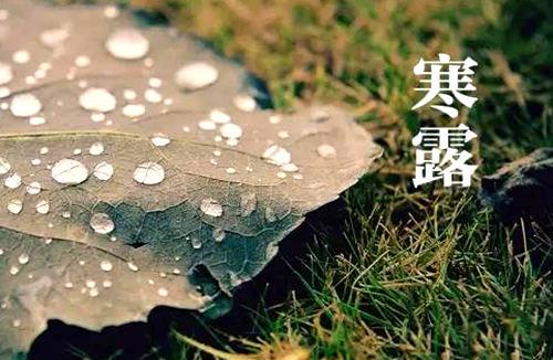 寒露早晚更添凉 雨水减少旱意显
