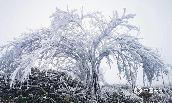 大雪 广西的冬天序幕拉开