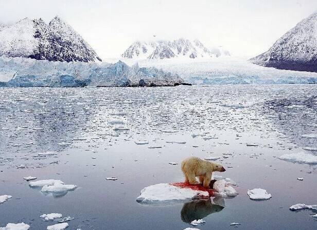 全球变暖正在改变生物气候定律