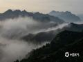 经历了持续多日的降雨之后,6月27日和28日清晨,河北承德金山岭长城景区接连出现了云雾。从山顶看,云雾笼罩群山,蜿蜒的古长城仿佛穿梭于云间的巨龙,美景犹如水墨画一般。(图\周万平)