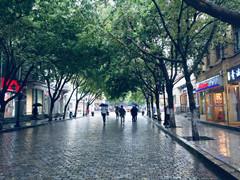 哈尔滨市气象台17日9时10分发布暴雨黄色预警信号