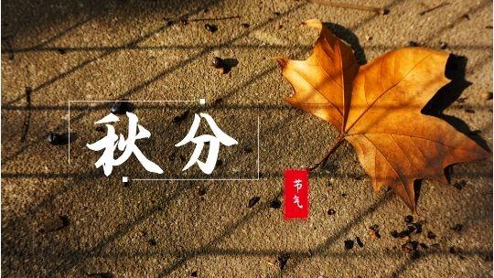 """""""秋分""""到 黑龙江雨水来袭或对秋收不利"""