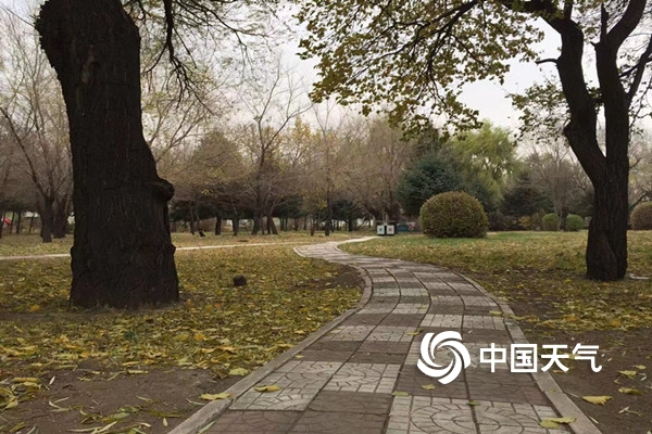 http://i.weather.com.cn/images/heilongjiang/tqyw/2019/10/28/1572238872151019814.jpg
