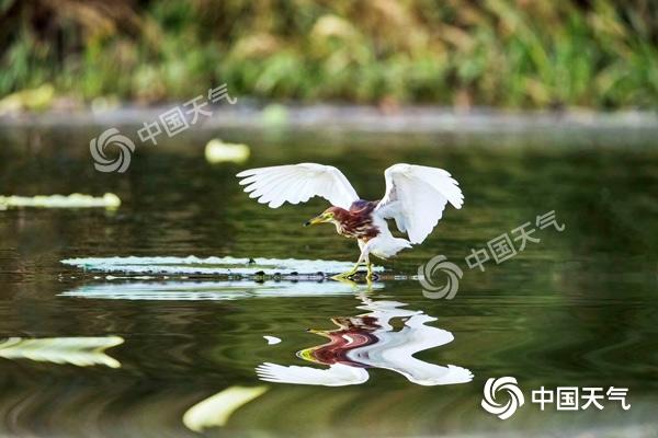 http://www.pingjiangbbs.com/pingjiangfangchan/23674.html