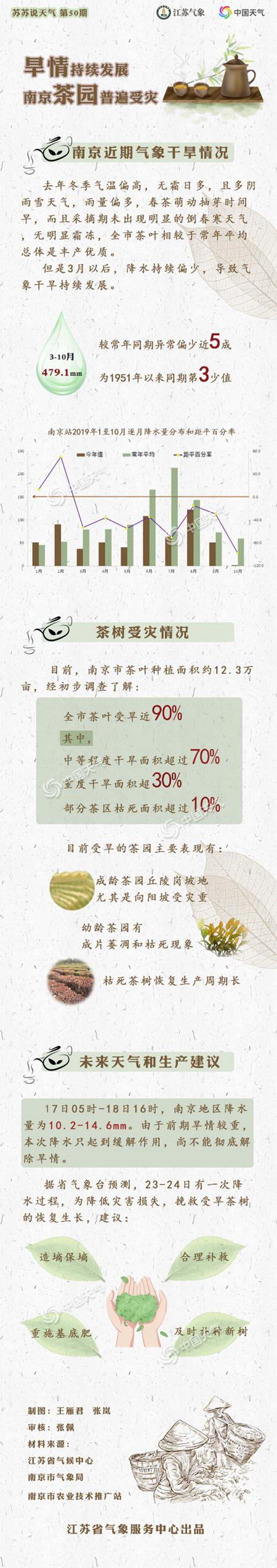 旱情持续发展 南京茶园普遍受灾