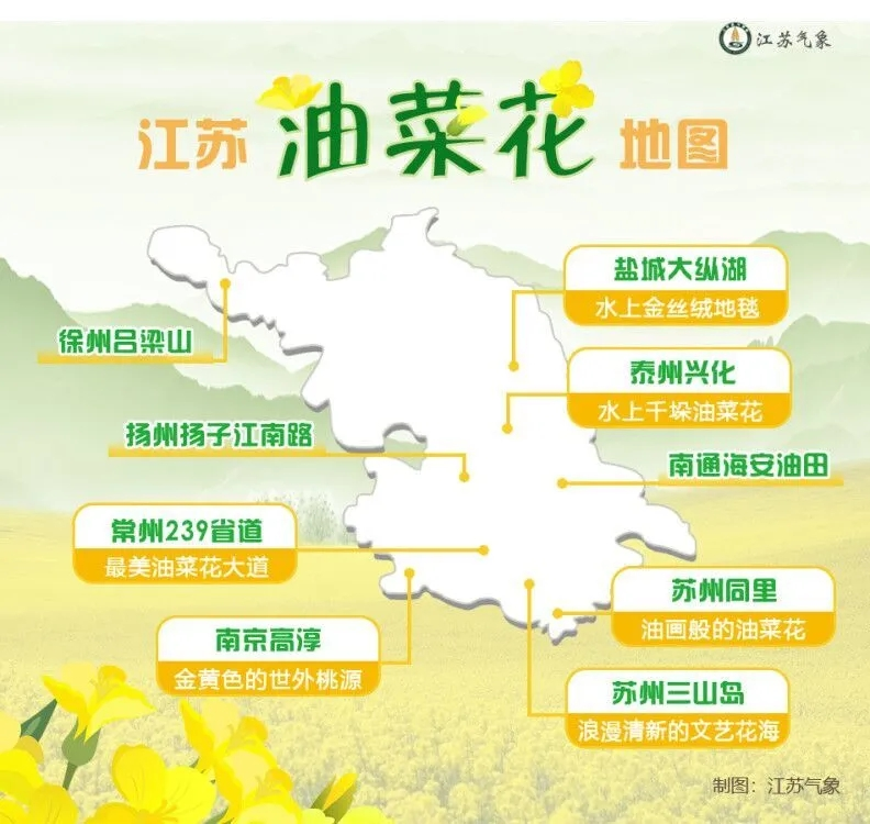 油菜花地图.webp.jpg