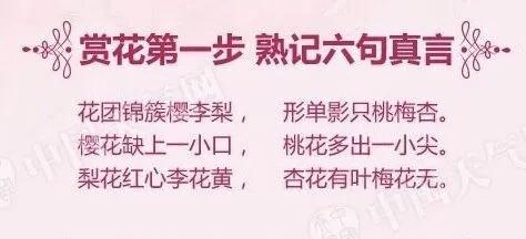 六句箴言.webp.jpg