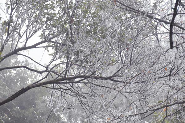 元旦假期期间 全国雨雪稀少气温反弹