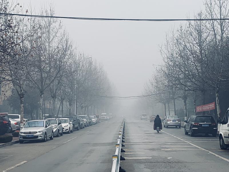 http://i.weather.com.cn/images/shandong/sdqxxw/2021/01/26/1611626139777010324.jpg