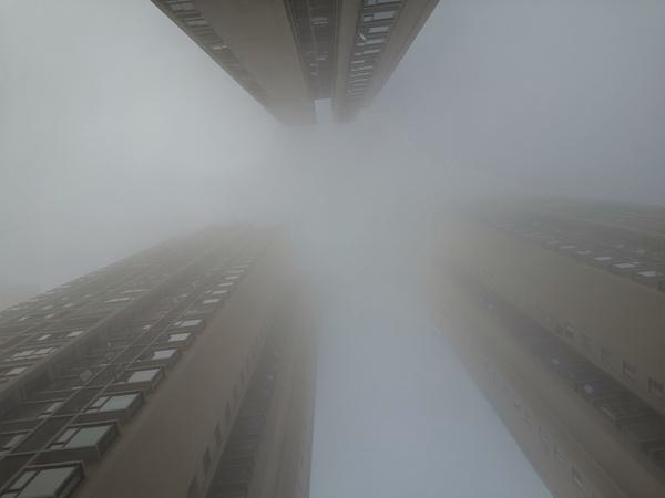 德阳遭遇入冬以来最强大雾袭击