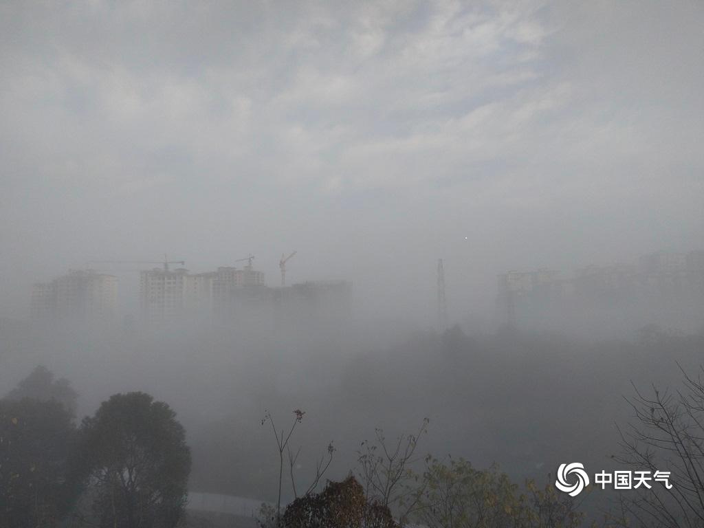 纳溪遭受大雾迷城