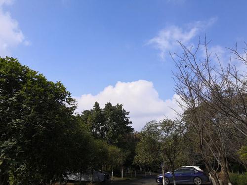 强冷空气来袭,内江将迎来强降温大风天气