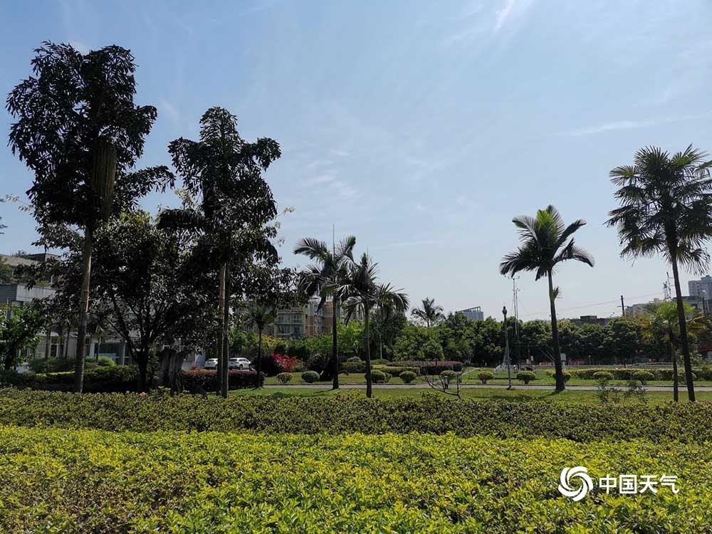 宜宾市三部门联合发布森林火险橙色预警