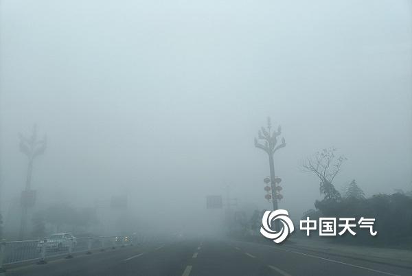 今年以来最强浓雾笼罩纳溪