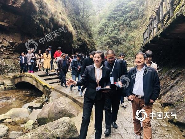 """首届""""中国天然氧吧""""交流培训会在杭州举办"""