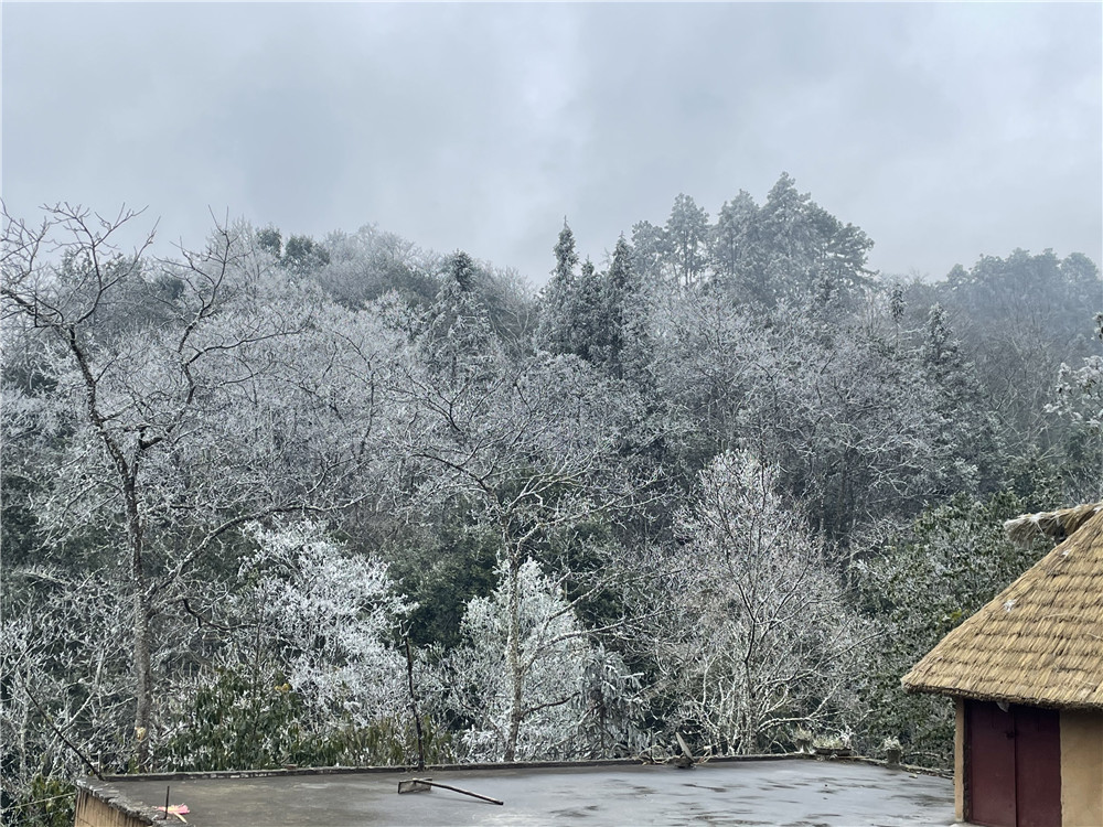 http://i.weather.com.cn/images/yunnan/tqyw/2021/01/12/1610418391273013350.jpg