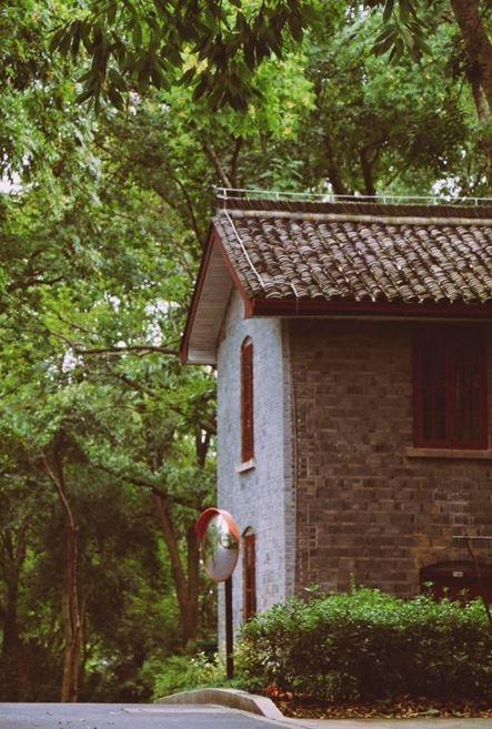 杭州萧山:秋雨潜入夜明天又转晴