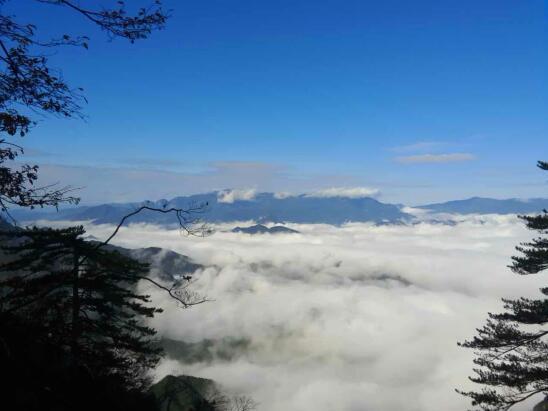 6日早晨,杭州临安大明山的云海景观美如画境.(蔡激扬摄)