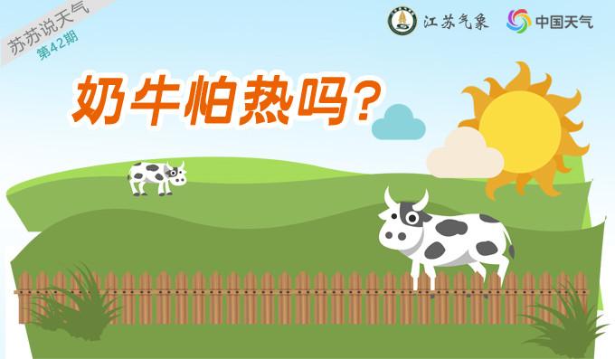 奶牛怕热吗?