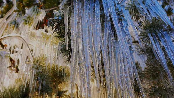 坠冰也能致死盗窃术?高速团雾危险极大余士兵?冬天隐藏着许多危险
