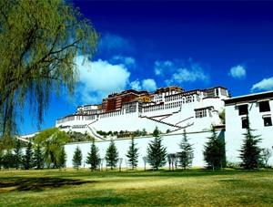 感知西藏春天的脚步