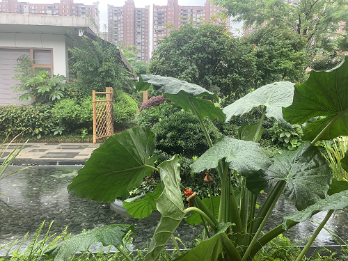 江西浙江2省区域有大暴雨