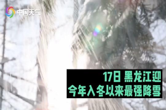 黑龙江迎今年入冬以来最强降雪 气温创新低
