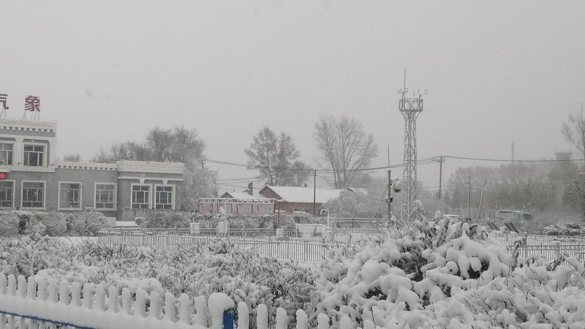 呼伦贝尔迎入冬以来第一场大范围降雪