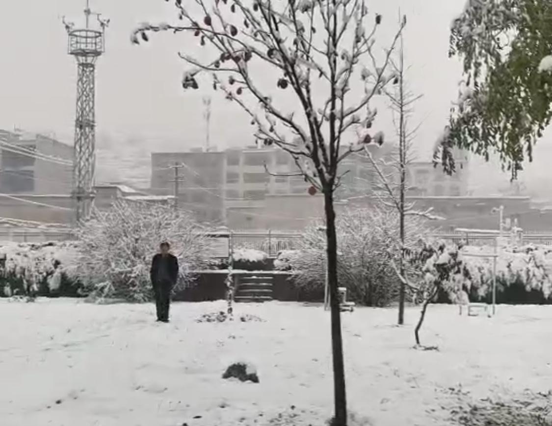 甘肃多地迎2020下半年来首场降雪