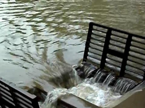 南方暴雨的来源之一——台风