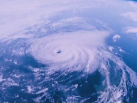 台风偏爱我国哪些地方?