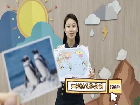 有不怕热的企鹅吗?