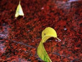 绵绵秋雨季 如何防情绪抑郁