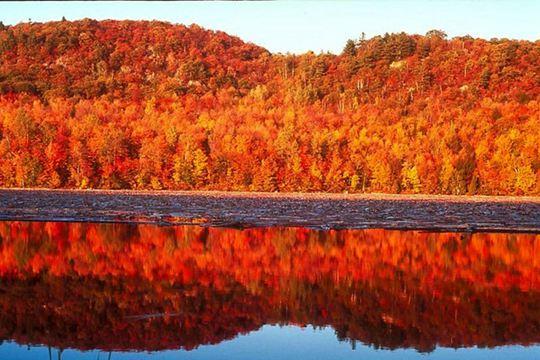 国庆游 这些旅行地秋景美得刚刚好