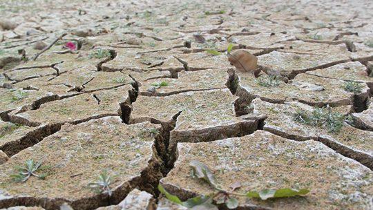 干燥!广东开平58天无降水土地龟裂