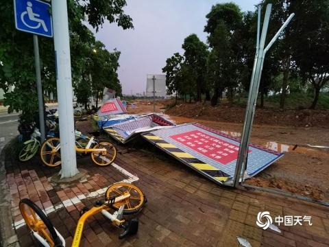 广西南宁遭遇强对流天气 街头大树被风吹倒