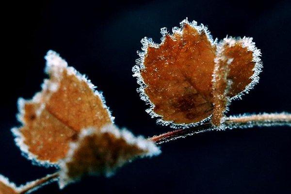 立冬和冬至有啥区别 你知道吗?