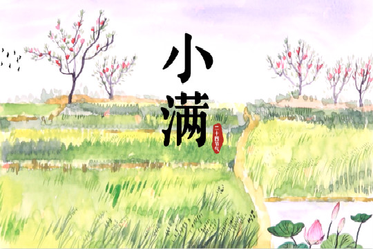 手绘节气·小满:春尽夏来,诸物皆满