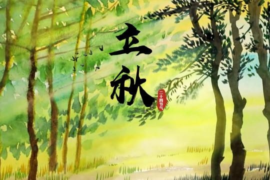 手绘节气立秋:一叶落而知天下秋