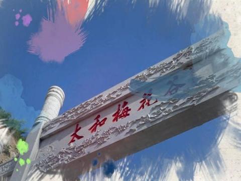 梅香天下——湖北十堰太和梅花谷